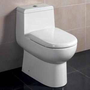 ariel_platinum_toilet_tb351_1__87223
